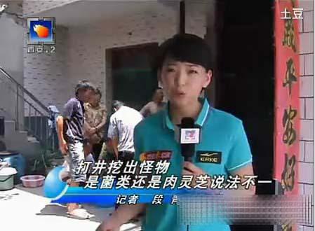 """自慰器""""肉灵芝""""走红网络 最纯情女记者(图)"""